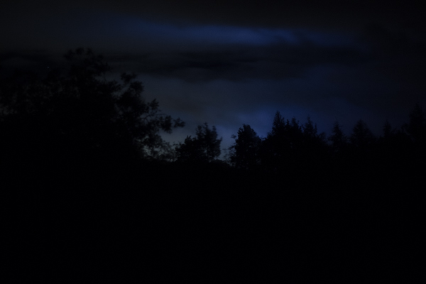 A photo of a dark sky above a line of trees